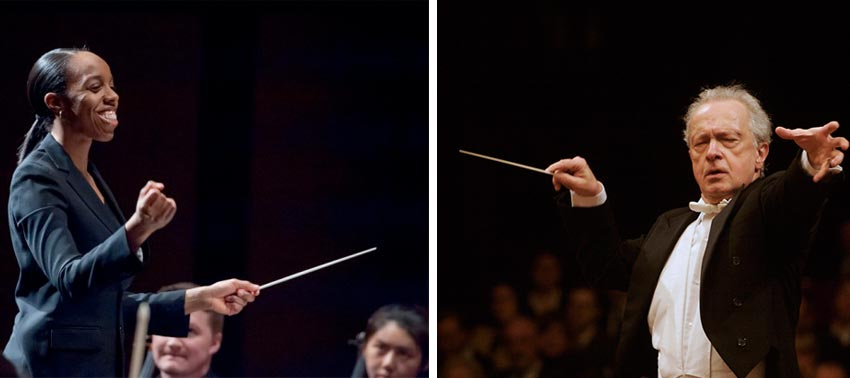 What Does A Conductor Do? | Gustavo Dudamel conducts Beethoven